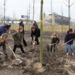 bomen planten op kop zuidas 20.3.2013